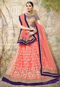 pink-blue-bordered-lehenga-choli