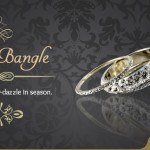 Ethnic Charm of Silver Bangles