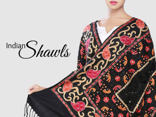 Indian Shawls And Stoles For Winter Warmth